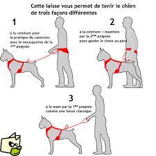 promo code 52b93 97699 Attrezzatura per Dog Trekking
